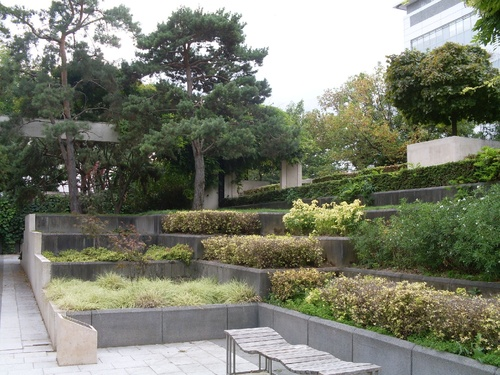 le jardin noir (suite)