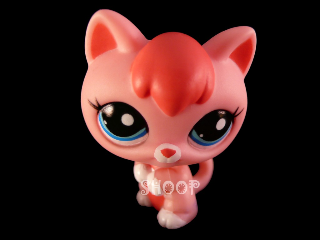 LPS 2593
