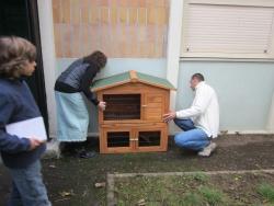 Installation de la cage à lapin extèrieure