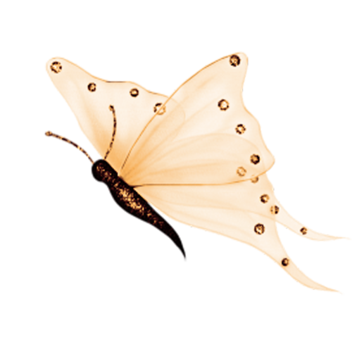 Papillons !                   1705