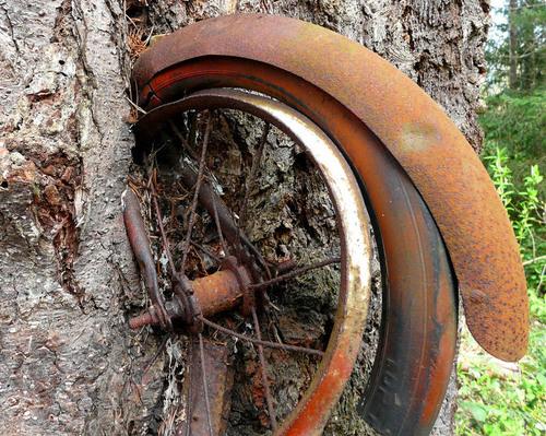 L'histoire d'un petit vélo !!!