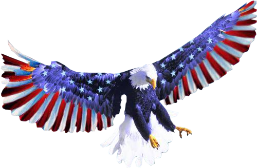 Tubes Amérique