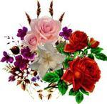 ~~ Ö beau rosier du paradis   ~~  de  Ch. Van Lerberghe