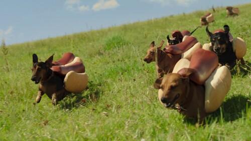 HEINZ PUB (2017) Wiene Stampede with Dogs (Publicités remarquables)