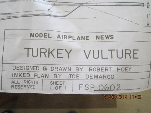 Turkey Vulture ?