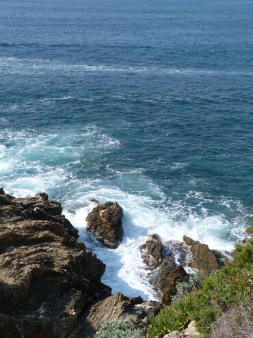 Randonnée ensolleillée à la pesqu'île de Giens