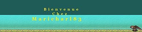 banniere-maricharl83.JPG