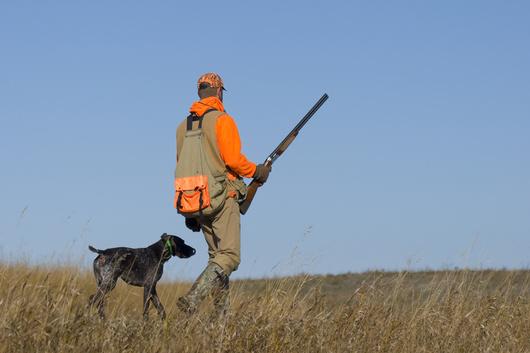 """Résultat de recherche d'images pour """"partir à la chasse"""""""