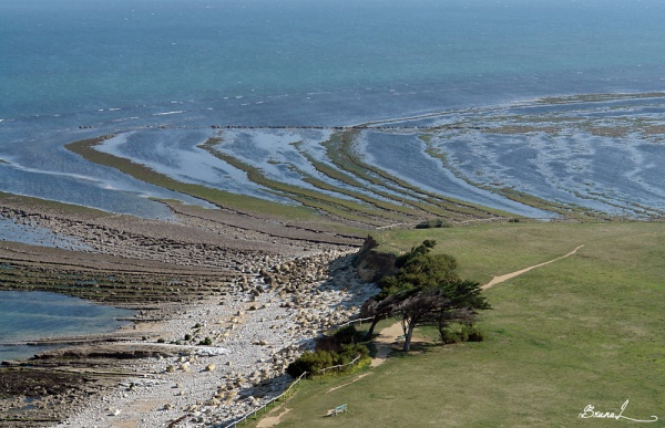 paysage du littoral