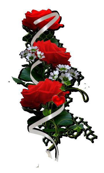 حصري لعيون سكرابز زهور جميله