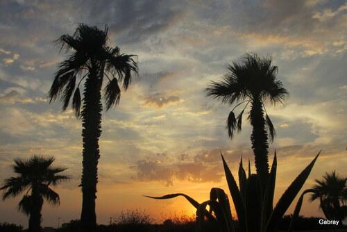 Soir au Barcarès : soleil ... bis