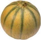 melon_1.jpg