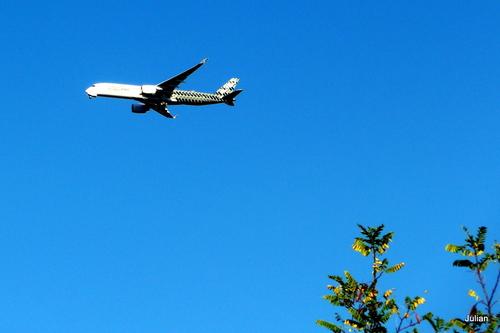 Un avion dans le ciel !