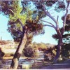 roquevaire moulin de daudet bouche du rhone