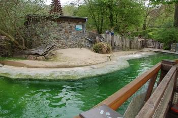 Zoo Osnabruck d50 2012 164