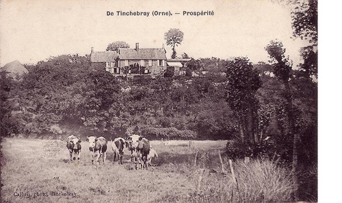 LES REMPARTS DE TINCHEBRAY (Orne)