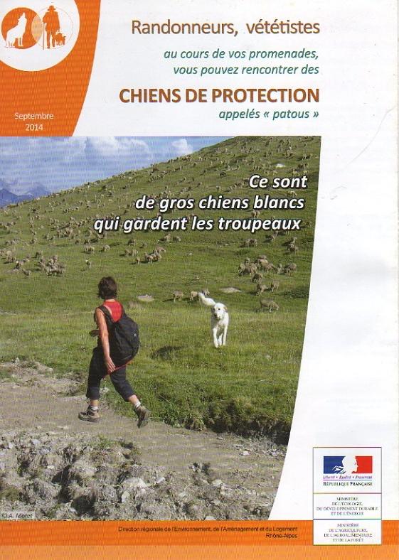 Les chiens de protection