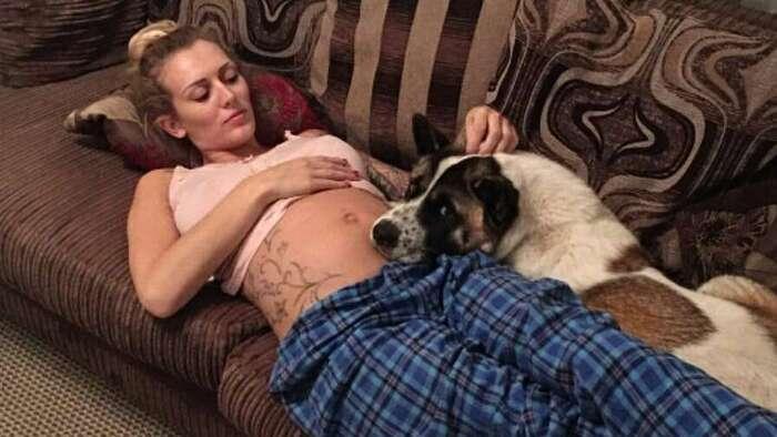 Enceinte, sa chienne gémit face à son ventre. Chez le médecin, elle apprend une triste nouvelle