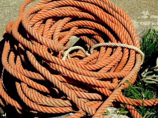 N01 - Une corde