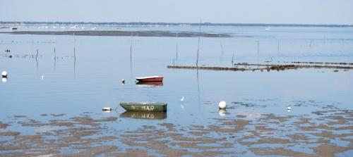 Bassin d'Arcachon à marée basse