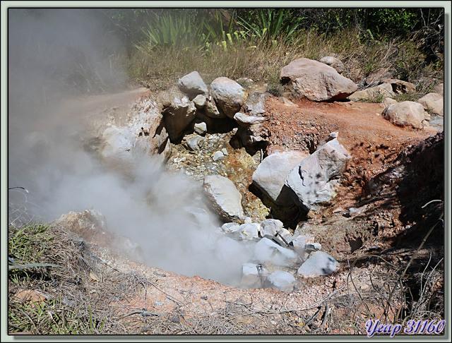 Blog de images-du-pays-des-ours : Images du Pays des Ours (et d'ailleurs ...), Près de l'Antre du Diable: pentes du volcan Rincon de la Vieja - Costa Rica