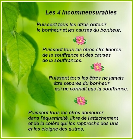 les4incommensurables