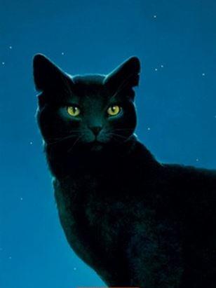 Etoile Noire - Nightstar