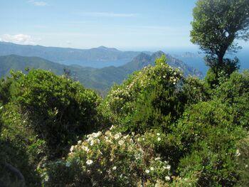 La double pointe de la Punta Castellaciu et du mont Senino; à droite, le Capu Rossu qui termine le golfe de Porto