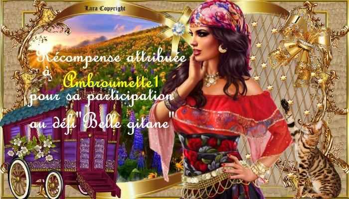 """Récompenses défi """"Belle gitane"""""""