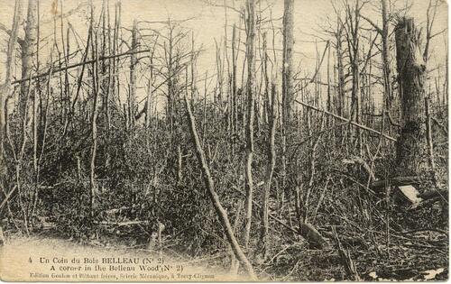 La bataille du Bois Belleau