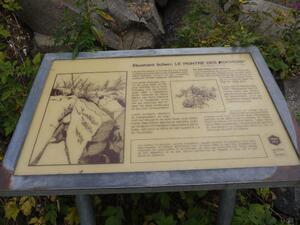 Esplicaion sur le lichen
