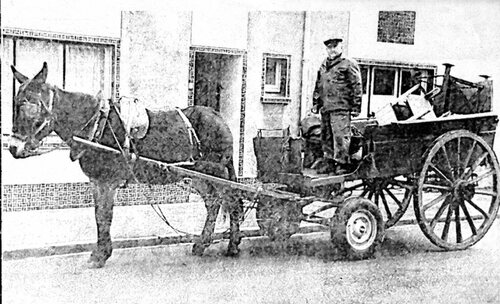 Un cheval assurant les livraisons