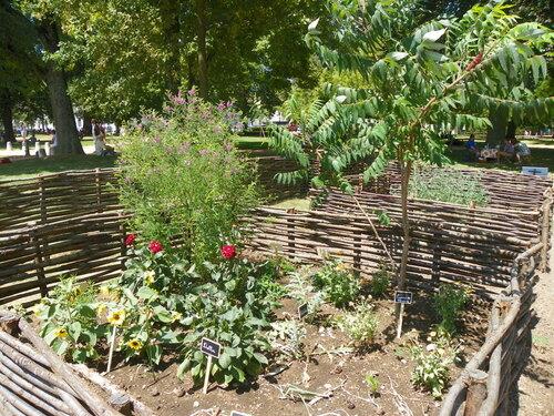 Petite histoire des jardins ( 1 )