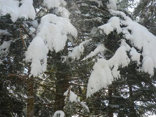 La neige possède ce secret de rendre au coeur en un souffle la joie naïve que les années lui ont impitoyablement arrachée