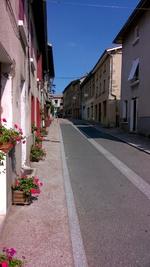 Dans les Monts du Lyonnais