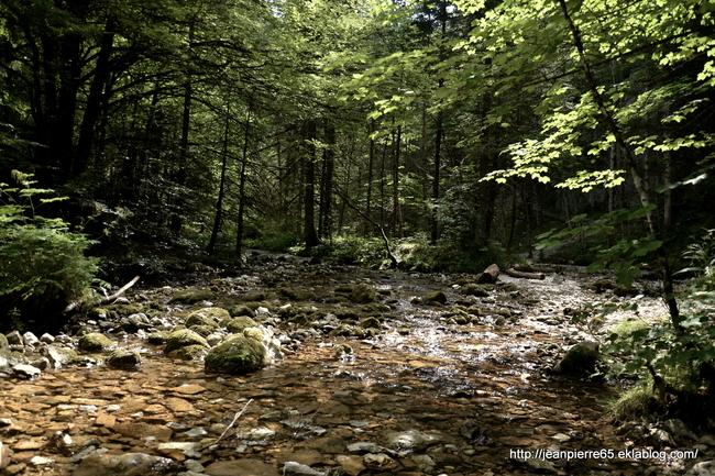 2015.07.19 Bain de fraicheurs dans le Vercors (1)