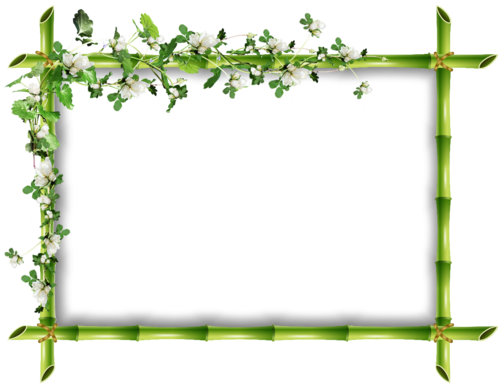 cadre bambou fleur