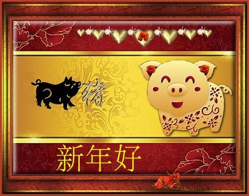 Nouvel chinois 2019!