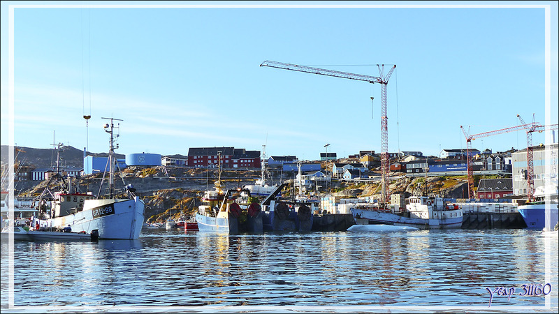 Port de pêche d'Ilulissat - Groenland