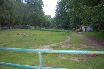 Zoo Neunkirchen 2012 072