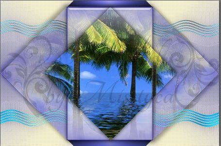 Miami Blue - Virginia