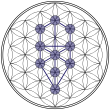 Tree-of-Life Flower-of-Life Stage.svg