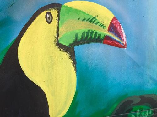 Costa Rica Street art