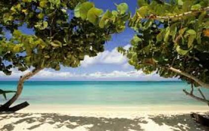 ~~ Guadeloupe ~~ de F. Morand