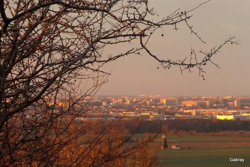 Un soir de décembre à Vieille Toulouse : fin de jour ...