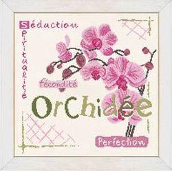 Sal Orchidee LLP (1)