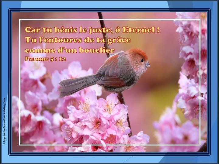 Tu bénis le juste, ô Eternel - Psaumes 5 : 12