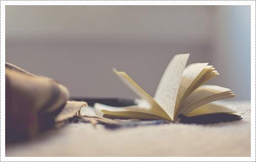 Tag: La lecture & moi