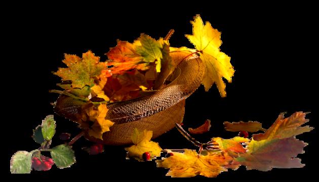 ♥♥♥ Rêve d'automne ♥♥♥