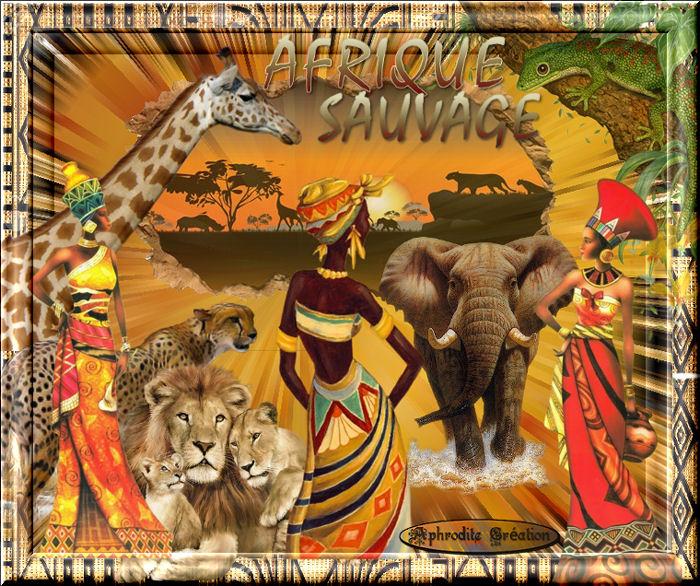 défi de Nath : Thème L'Afrique